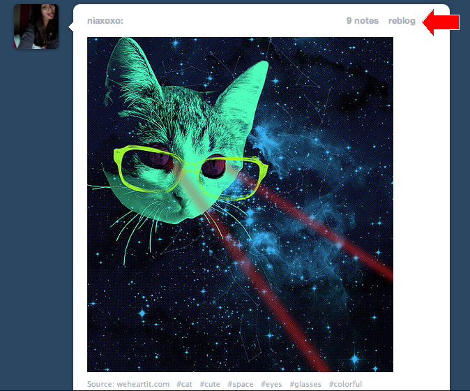 """Tumblr มี่ปุ่ม """"รีบล็อก"""" ที่ทำให้เราสามารถนำเนื้อหาของคนอื่นมาแปะไว้ในโปรไฟล์ของเราได้"""